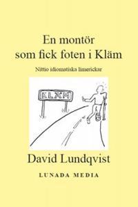En montör som fick foten i Kläm : nittio idiomatiska limerickar