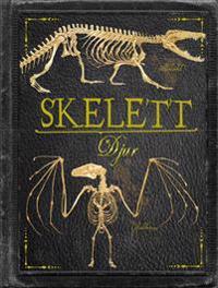 Skelett : djur