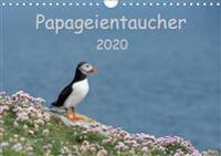 Papageientaucher 2020CH-Version  (Wandkalender 2020 DIN A4 quer)