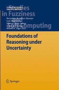 Foundations of Reasoning under Uncertainty