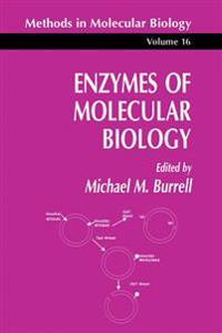 Enzymes of Molecular Biology