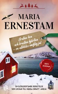 Brutna ben och brustna hjärtan - en alldeles omöjlig jul - Maria Ernestam | Laserbodysculptingpittsburgh.com