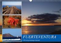 Fuerteventura, l'île du printemps éternel (Calendrier mural 2020 DIN A3 horizontal)