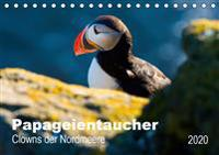 PAPAGEIENTAUCHER - Clowns der Nordmeere (Tischkalender 2020 DIN A5 quer)