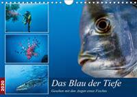 Das Blau der Tiefe (Wandkalender 2020 DIN A4 quer)