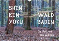 Shinrin yoku - Waldbaden 2020 (Wandkalender 2020 DIN A3 quer)