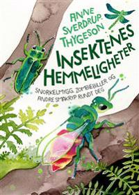 Insektenes hemmelige liv