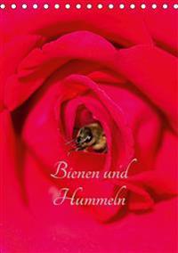 Bienen und Hummeln (Tischkalender 2020 DIN A5 hoch)