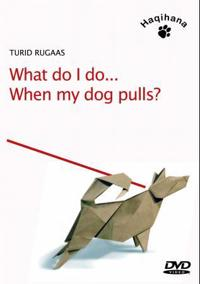 What do I do when my dog pulls?
