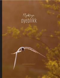 Flyktige øyeblikk - Aleksander Myklebust pdf epub
