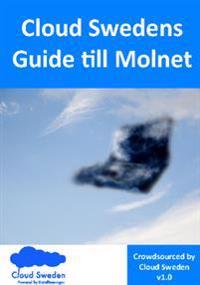 Cloud Swedens = Guide till molnet - Alexander Hedlund, Inger Gran, Anders Brännfors, Mikael Carlsson, Bengt Höjer, Ulf Berglund, Lars Perhard, Mette Engström pdf epub
