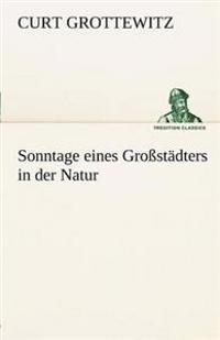 Sonntage Eines Grossstadters in Der Natur