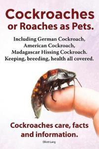 Cockroaches as Pets. Cockroaches care, facts and information. Including German Cockroach, American Cockroach, Madagascar Hissing Cockroach. Keeping, breeding, health all covered.
