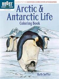 Arctic and Antarctic Coloring Book, Grades 3-5