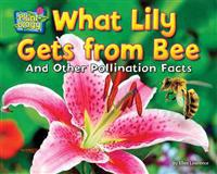 What Lily Gets from Bee: And Other Pollination Facts
