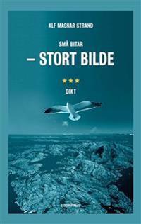 Små bitar - stort bilde - Alf Magnar Strand pdf epub