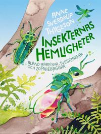 Insekternas hemligheter : Bland bärfisar, tvestjärtar och zombiebaggar - Anne Sverdrup-Thygesen pdf epub