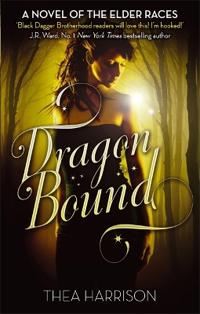 Dragon bound - number 1 in series