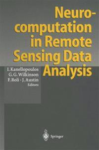 Neurocomputation in Remote Sensing Data Analysis