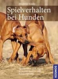 Spielverhalten bei Hunden