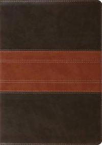 Study Bible-ESV-Trail Design