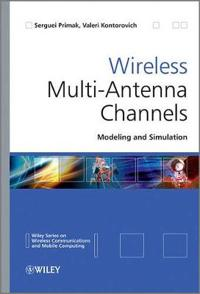 Wireless Multi-Antenna Channels: Modeling and Simulation
