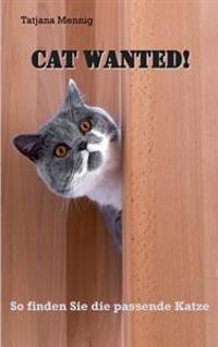 Cat Wanted!