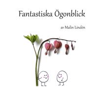 Fantastiska ögonblick - Malin Lindén pdf epub
