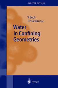 Water in Confining Geometries