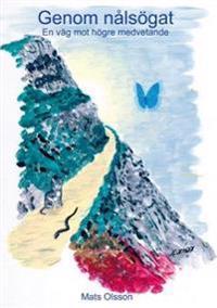 Genom nålsögat : en väg mot högre medvetande
