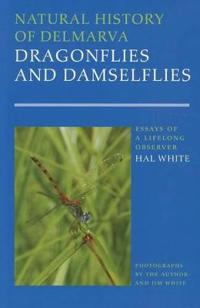 Natural History of Delmarva Dragonflies and Damselflies