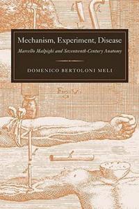 Mechanism, Experiment, Disease