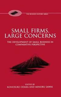 Small Firms, Large Concerns