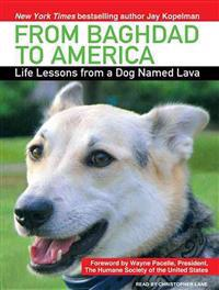 From Baghdad to America: Life Lessons from a Dog Named Lava