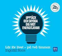 Upptäck och skydda dig mot energitjuvar: På två timmar