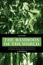 The Bamboos of the World