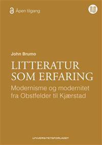 Litteratur som erfaring - John Brumo pdf epub
