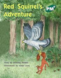 Red Squirrel's Adventure