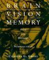 Brain Vision Memory