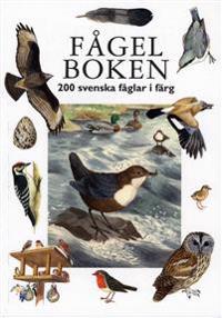 Fågelboken : 200 svenska fåglar i färg