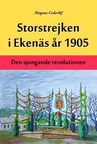 Storstrejken i Ekenäs år 1905 - Magnus Cederlöf pdf epub