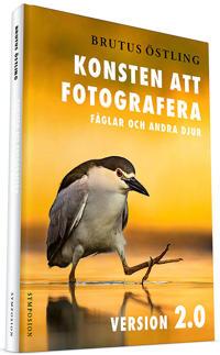Konsten att fotografera fåglar och andra djur : version 2.0 - Brutus Östling pdf epub