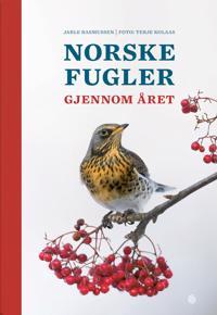 Norske fugler igjennom året - Jarle Rasmussen | Ridgeroadrun.org