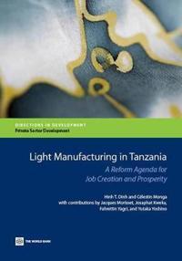 Light Manufacturing in Tanzania