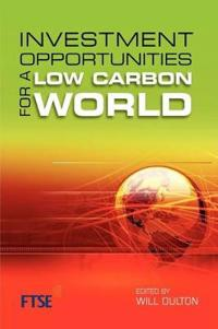 Investment Strategies for a Low Carbon World