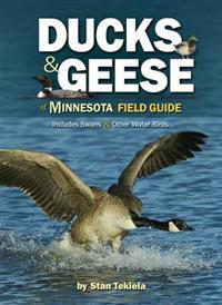 Ducks & Geese of Minnesota Field Guide