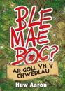 Ble Mae Boc? ar Goll yn y Chwedlau