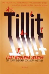 Tillit i det moderna Sverige : den dumme svensken och andra mysterier