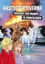 Mysteriet med branden på ponnyklubben