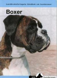 Boxer -  pdf epub